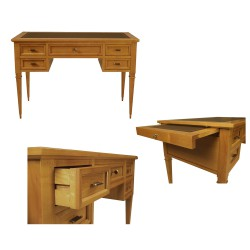 Writing desk Direttorio 5069